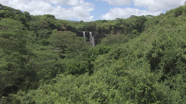 AERIAL Tree tops leading to a waterfall pouring into a pond / Oahu, Hawaii, United States