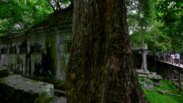 Tree trunk and temple walls and bridge with people