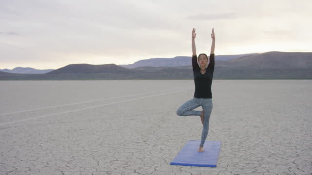 Tree yoga pose in the desert