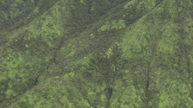 AERIAL Tree-covered ridges and valleys / Hawaii, United States
