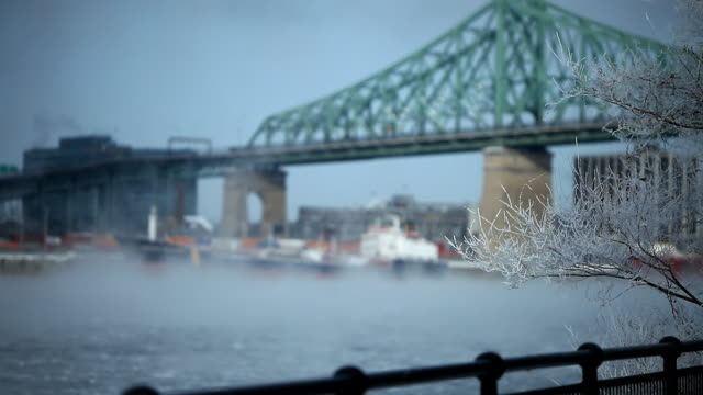 a treee with ice on his branches and smoke on the water with jacques-cartier bridge in montreal - montréal stock videos & royalty-free footage