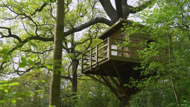 vídeos de stock, filmes e b-roll de treehouse in treetops - treehouse