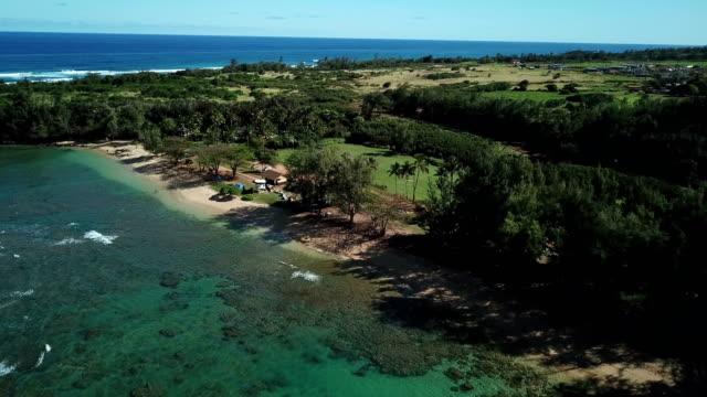 ドローンでマウイ島の海岸線の並木 - 谷点の映像素材/bロール