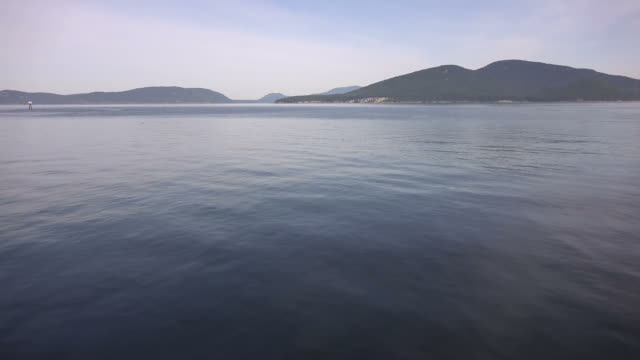 Tree-Lined Lake in Washington State