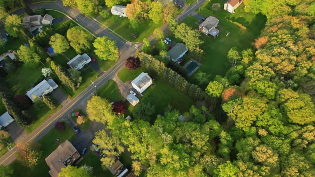 AERIAL Trees and houses in middle class neighborhood at sunset / Southington, Connecticut, USA