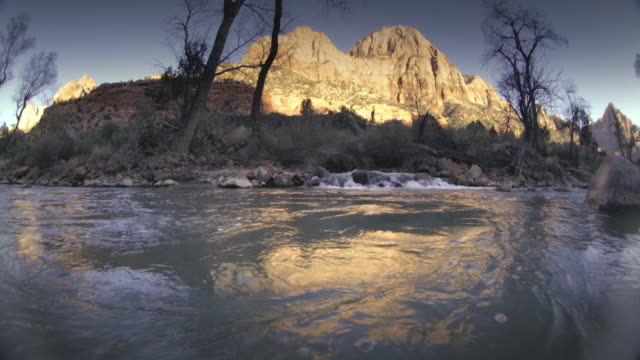 ws pan trees and mountain reflecting in virgin river / zion national park, utah, usa  - zion national park stock videos & royalty-free footage