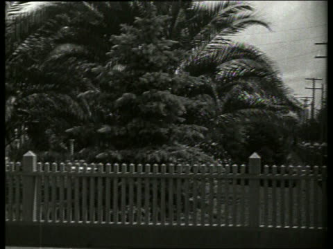 b/w trees and picket fence / 1920's / no sound - picket fence stock videos & royalty-free footage