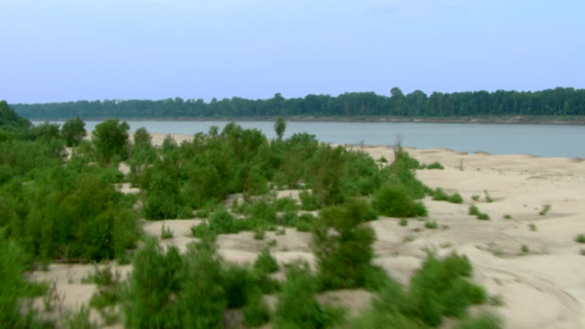 Trees and shrubs grow in the sand on the banks of the Mississippi River.