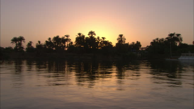 trees and sunlight reflect in the nile river in egypt. - luxor stock-videos und b-roll-filmmaterial