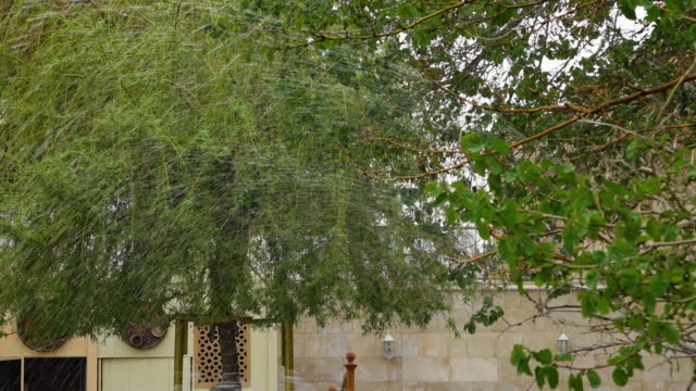 trees and water sprays in foreground - bukhara stock videos & royalty-free footage
