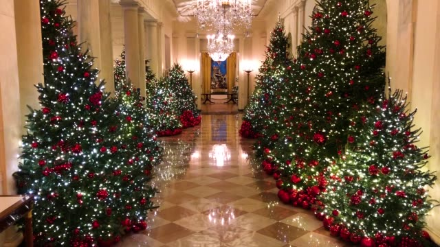 Trees decorated for the holidays line the White House Cross Hall as light projections of foliage run the length of the ceiling The 2018 theme of the...