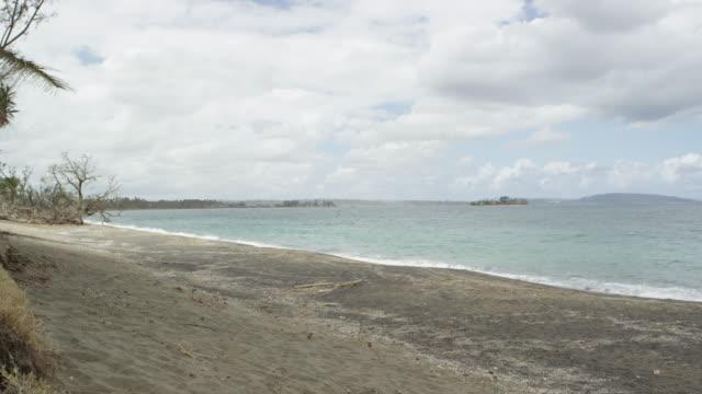 vídeos de stock e filmes b-roll de vanuatu - march 28, 2015: trees fallen on beach, grey sky - árvore tropical