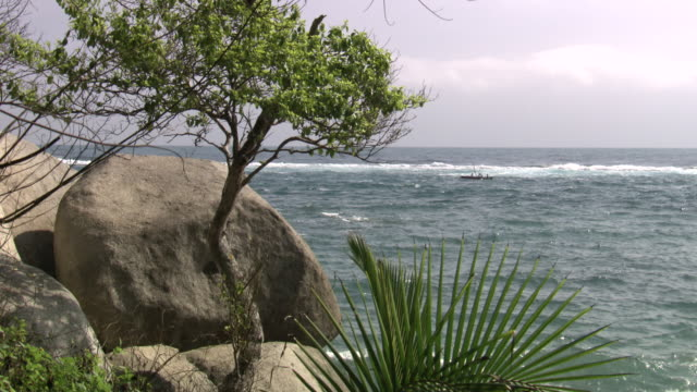 Trees, foliage and rock in f/g with small fishing boat on choppy blue ocean behind, Tayrona National Natural Park [Parque Nacional Natural Tayrona], Sierra Nevada, Colombia