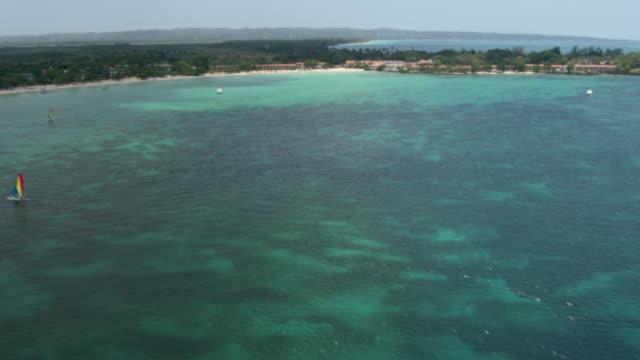 Trees grow along the coastline near Negril resort in Jamaica.