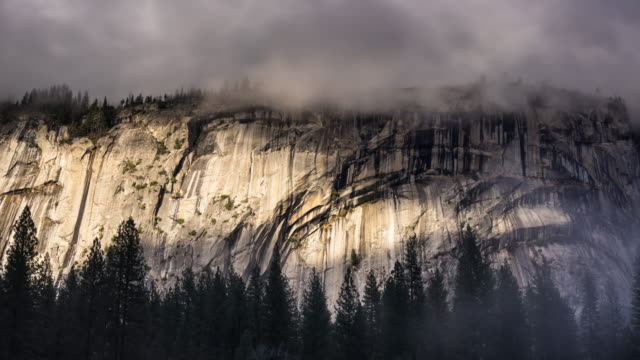 Trees in Fog Beneath Cliff Face in Yosemite - Time Lapse
