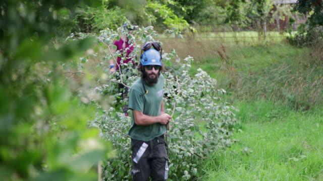 vídeos y material grabado en eventos de stock de los árboles en el campo - distrito de los lagos de inglaterra