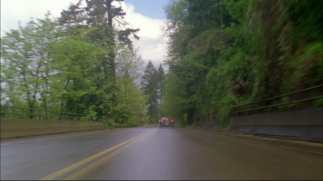 trees line a street. - portland oregon stock videos & royalty-free footage