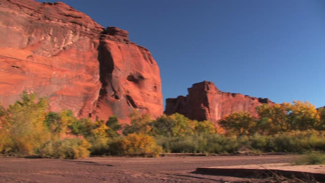 ws pan trees on canyon floor/ canyon de chelly national monument, arizona - canyon de chelly stock videos & royalty-free footage