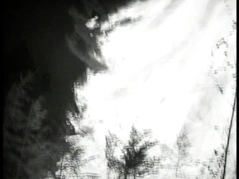 vídeos de stock e filmes b-roll de night trees on fire - 1935
