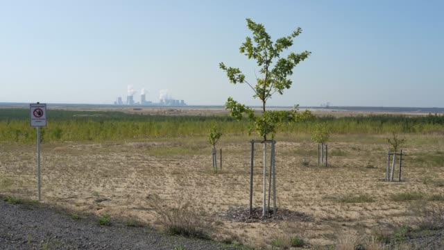 trees planted in a landscaped portion of land previously torn open by the nochten openpit coal mine and that is now under recultivation stand near... - landscaped stock videos & royalty-free footage