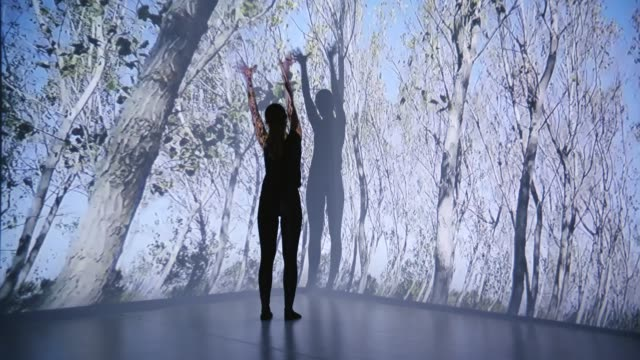 trees projection upon a female dancer - ray stock videos & royalty-free footage