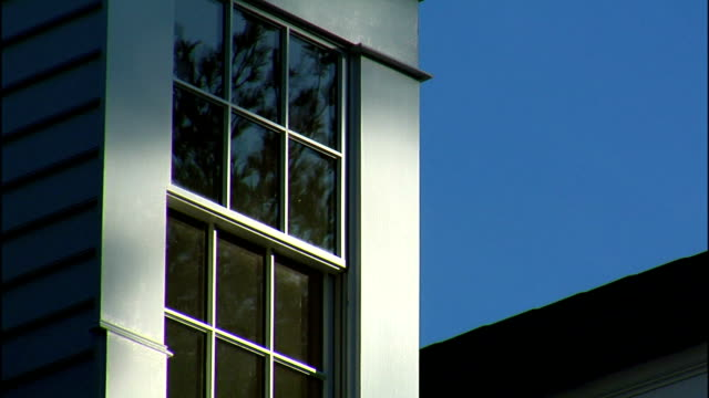 trees reflect in glass on a gable. - gable stock videos & royalty-free footage