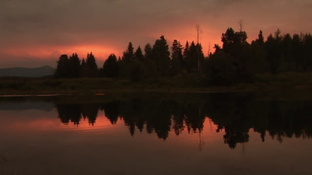 ms, trees reflected in water at sunset, snake river, grand teton national park, wyoming, usa - snake river stock videos & royalty-free footage
