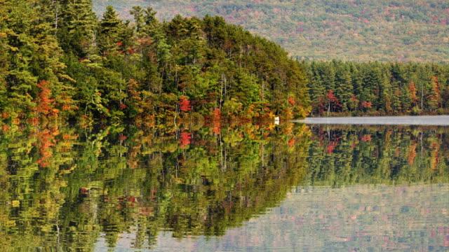 ws trees reflecting in chocorua lake / new hampshire, usa - new hampshire stock videos & royalty-free footage