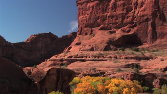 WS Trees/ TU Sunlight on rock wall/ Canyon de Chelly National Monument, Arizona