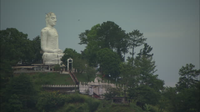 trees surround a statue of the buddha. - sri lankan culture stock videos and b-roll footage