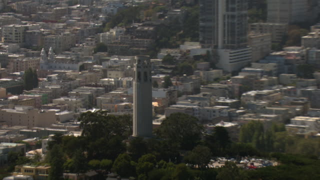 trees surround coit tower on telegraph hill. - coit tower stock videos & royalty-free footage
