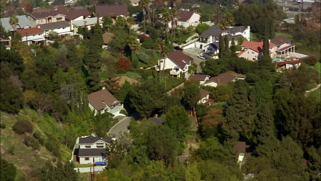 Trees surround the houses in a neighborhood of the San Fernando Valley.