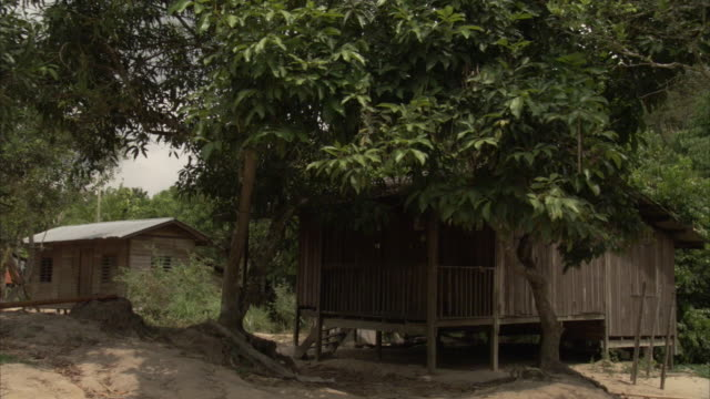 trees surround two homes on stilts in a flood zone in kuala lumpur, malaysia. - stilts stock videos and b-roll footage