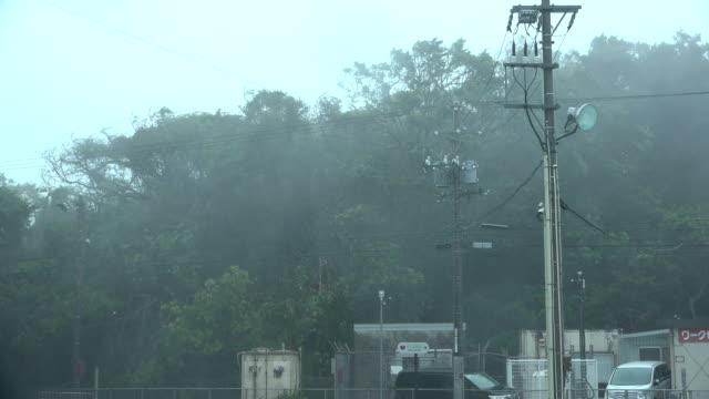 Trees thrash and sway in powerful hurricane force winds as typhoon Trami hits Okinawa Japan