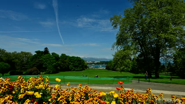 Trees,lawns and flowers in the Geneva lakeside park