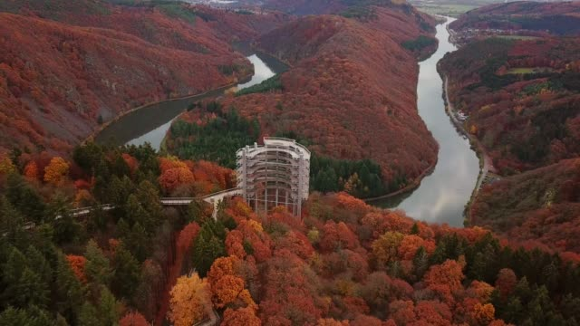 treetop walk, saarschleife at cloef viewpoint in orscholz and saar river bend, mettlach, saarland, germany, europe - river bend land feature stock videos & royalty-free footage