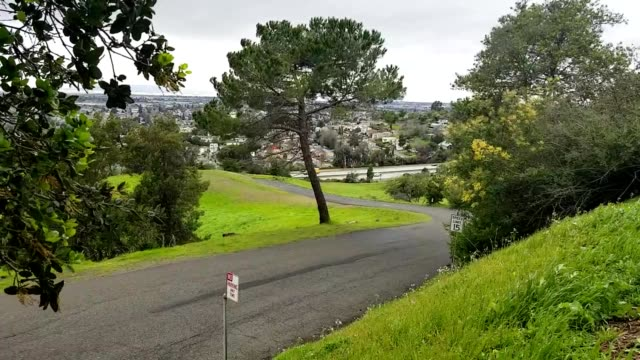 Tress blow in strong winds on a hill in Knowland Park Oakland California February 26 2019