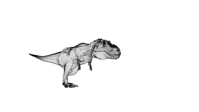 t-rex wireframe animation - computer graphic stock videos & royalty-free footage