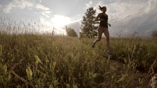 triathlete trail runner follows trail through field at sunrise - triathlete stock videos and b-roll footage