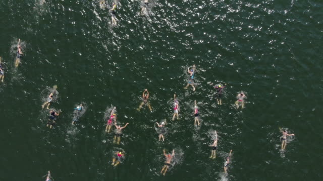 triathletes from above - swimming stock videos & royalty-free footage