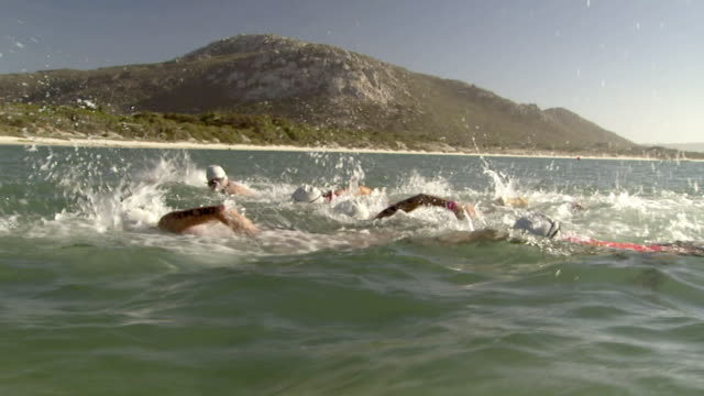 slo mo ts ws triathletes swimming toward shore in kraalbaai and running onto beach / langebaan, south africa - 1 minute or greater stock videos & royalty-free footage