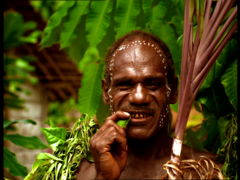a tribal man in fiji uses part of a plant to brush teeth. - zahnbürste stock-videos und b-roll-filmmaterial