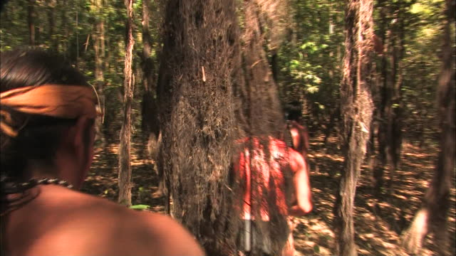 tribesmen stalk through a forest in brazil. - stamm stock-videos und b-roll-filmmaterial