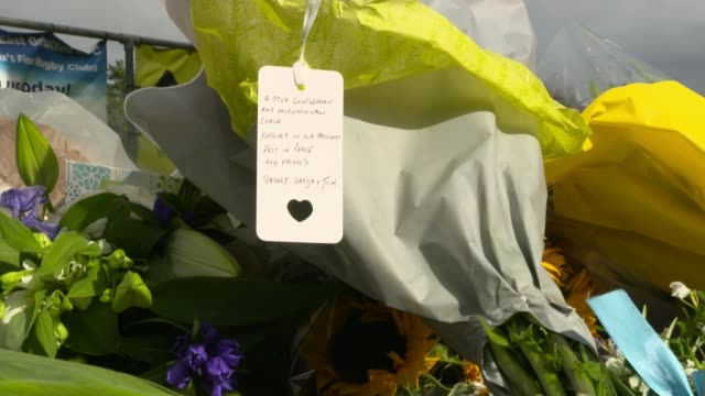 tributes paid to police officer shot dead by suspect at croydon police station location ryan morlen interview via internet sot new zealand flag... - pole stock videos & royalty-free footage
