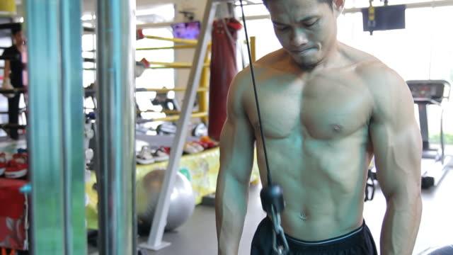 vidéos et rushes de triceps corde pushdown - membres du corps humain