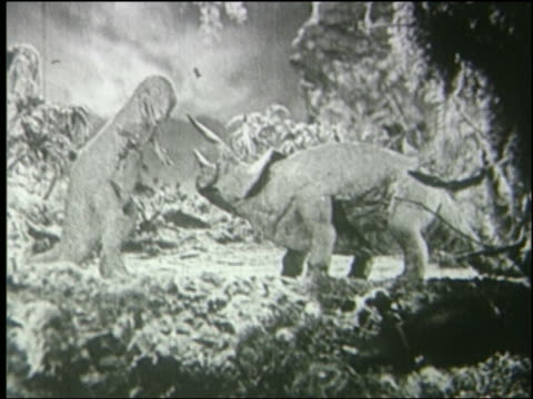 b/w triceratops wounds tyrannosaurus rex with horn, tyrannosaurus walks away - triceratops stock videos and b-roll footage