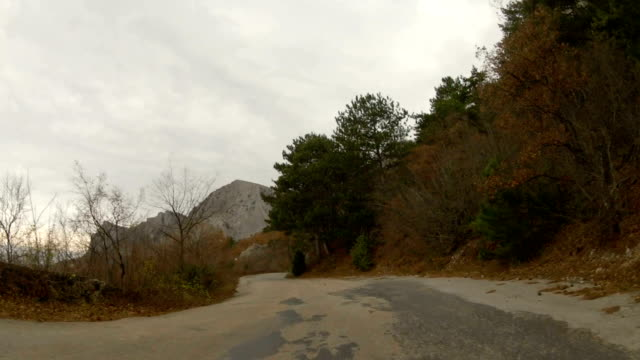 Reise zum Berg durch den Wald auf der alten zerstörten Straße