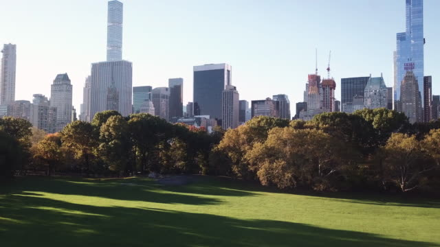 A trippy paralax shot of New York City's Central Park