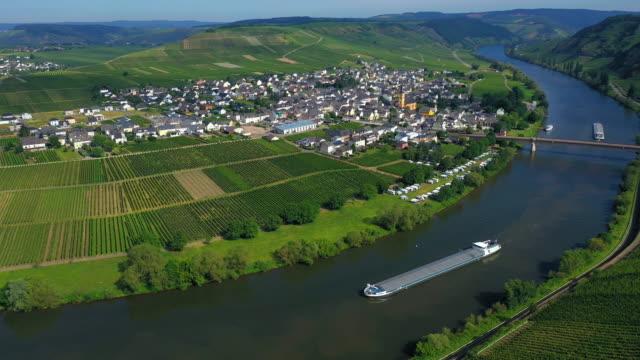 trittenheim, moselle valley - rheinland pfalz stock-videos und b-roll-filmmaterial