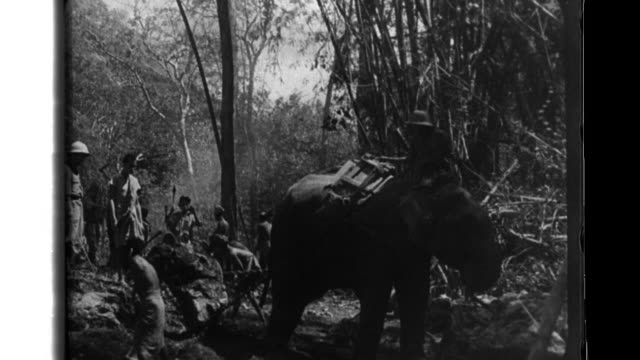 troops develop infrastructure through dense forests in burma - bridge built structure stock videos and b-roll footage